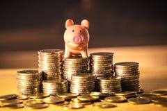 Ein Sparschwein auf Geldstapel für Rettungsgeldkonzept, Raum von Unternehmensplanungsideen, Versicherungsleben in der Zukunft stockfotografie
