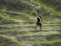 Ein spielendes Kind, Dien Bien Phu Province stockfotos