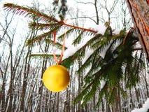 Ein Spielzeug auf einem Pelzbaum mit Porzellan Santa Claus und Tannenbaum Stockfoto
