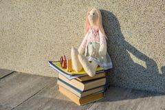 Ein Spielzeug, Gläser, Bleistifte, Notizbücher, ein Stapel von Büchern Lizenzfreies Stockbild