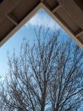 Ein Stück des Himmels Lizenzfreie Stockbilder