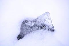 Ein Stück Eis an der Wintersaison Stockfoto