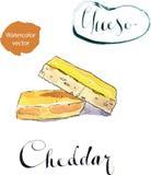 Ein Stück organischer scharfer Cheddar-Käse Lizenzfreies Stockbild
