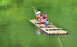 Ein Stammleben im thekkady Wald, Kerala stockfotos