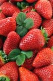 Ein Stapel der reifen Erdbeeren Stockfotos