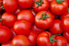 Ein Stapel der Tomaten Stockbild