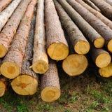 Ein Stapel des Holzes Stockfotos