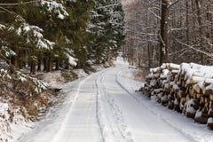 Ein Stapel des Holzes bedeckt mit Schnee Wintermantel, Waldweg und ein Stapel von Nadelbäumen nahe bei ihm Jahreszeitwinter Lizenzfreies Stockbild