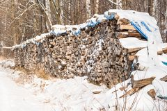 Ein Stapel des Holzes bedeckt mit Schnee Wintermantel, Waldweg und ein Stapel von Nadelbäumen nahe bei ihm Jahreszeitwinter Lizenzfreie Stockfotos