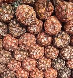 Ein Stapel von Ananas zusammen Lizenzfreie Stockbilder