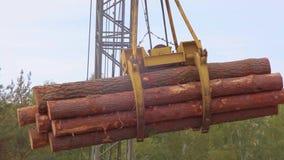 Ein Stapel von den Klotz getragen durch Kran, Nahaufnahme Ein Stapel von Klotz werden in der Luft verschoben Waldgefangennahme au stock video footage