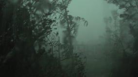 Ein starker Hurrikan außerhalb des Fensters stock footage