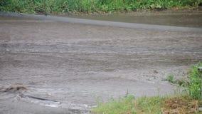 Ein starker Strom des Wassers direkt auf einer Stadtstraße nach einem schweren Regenguß Elemente und schlechtes Wetter stock video