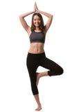 Ein stehendes Yoga der Frau auf einem Bein stockbilder
