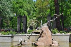 Ein Stein und ein kleiner Teich Lizenzfreies Stockfoto
