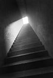 Ein Steintreppenhaus Stockfotografie