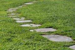 Ein Steinweg durch ein grünes Gras, grüner Naturhintergrund lizenzfreies stockfoto