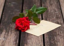 Ein Stiel der Rotrose mit Liebe lizenzfreies stockfoto