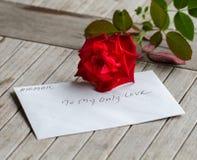 Ein Stiel der Rotrose mit Liebe lizenzfreie stockbilder