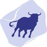 Ein Stier Stockfotos