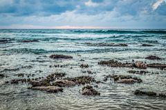 Ein Sturm kommt an Bondi-Strand Lizenzfreie Stockfotos