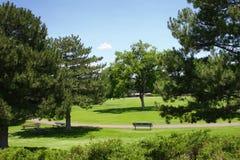 Ein Tag im Park Stockfotos