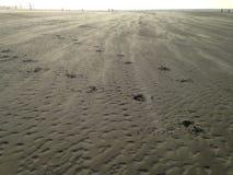 Ein Tag am Strand Stockfoto