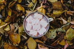Ein Tasse Kaffee mit Eibischen auf einem Hintergrund von gelben Bl?ttern lizenzfreies stockfoto