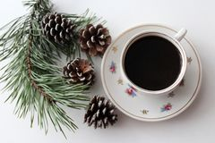 Ein Tasse Kaffee nahe bei einer Kiefernniederlassung mit Kegeln auf einem weißen Hintergrund Lizenzfreies Stockbild