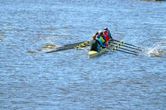 Ein Team von Ruderern in einem Sportboot lizenzfreie stockfotos