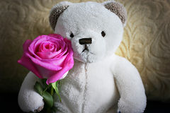 Ein Teddybär Stockfoto