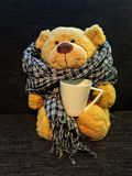 Ein Teddybär, der auf einer Couch mit einem Schal und einer Tasse Tee sitzt lizenzfreies stockfoto
