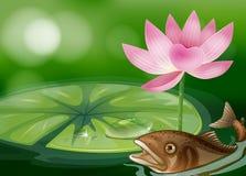 Ein Teich mit einem Fisch, waterlily und einer Blume Lizenzfreie Stockfotografie