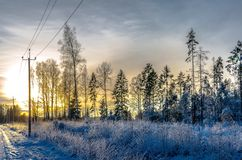 Ein Telefonmast durch einen schneebedeckten Wald bei Sonnenuntergang Stockfotos