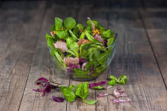 Ein Teller von verschiedenen Arten von bunten Kopfsalatblättern, von Arugula, von Prosciuttoschinken, von Olivenöl und von Dijon- Stockfoto