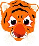 Ein Tiger Cub Stockfoto