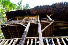 Ein Tourist steht am Portal eines hölzernen Baumhauses stockfotos