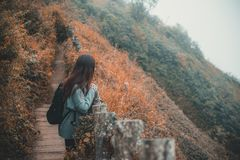 Ein touristisches Gehen und ein Trekking der Frau entlang den Bergen im tropischen Wald stockfotografie