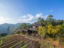 Ein traditionelles Holzhaus im Berg Lizenzfreies Stockbild