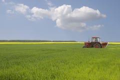 Ein Traktor auf dem Grasfeld mit blauem Himmel Lizenzfreie Stockfotografie