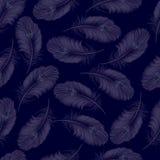 Ein transparenter Hintergrund von den Federn ohne Naht Vektor illu stock abbildung