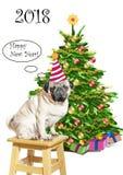 Ein trauriger Pughund in einer lustigen gestreiften Kappe auf einem Schemel nahe dem Baum des neuen Jahres mit Geschenken beglück Stockbilder