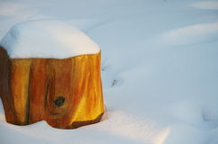 Ein treestump im Schnee Stockfotografie