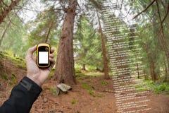 Ein Trekker findet, dass der riA Trekker die rechte Position im Wald über gps in einem bewölkten Herbsttag findet lizenzfreies stockfoto