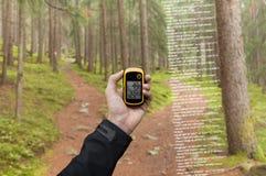 Ein Trekker findet die rechte Position im Wald über gps in einem bewölkten Herbsttag stockfotografie