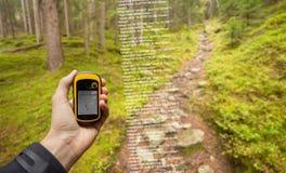 Ein Trekker findet die rechte Position im Wald über gps in einem bewölkten Herbsttag lizenzfreie stockfotografie