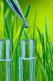 Ein Tropfen des Trinkwassers des Reagenzglases Lizenzfreies Stockbild