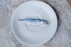 Ein tropischer gebratener Fisch auf einem weißen Teller Lizenzfreie Stockfotografie