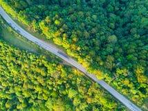 Ein tropischer Regenwald und eine Landstraße in Thailand Stockfotografie