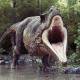 Ein Tyrannosaurus Rex, der im Wasser mit einer aggressiven Position und einem Holzhintergrund steht Stockbild